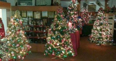 Queens County Museum Christmas 'Forest of Trees' 2015