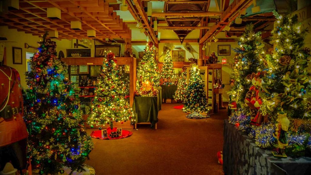 queens county museum forest of christmas trees 201601