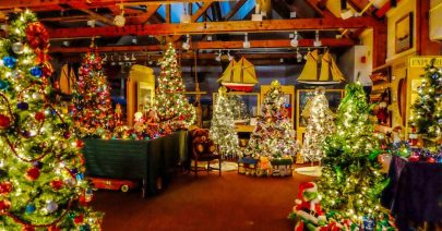 Queens County Museum Forest of Christmas Trees