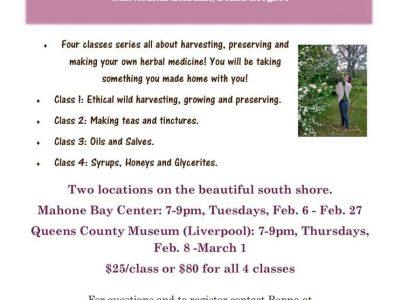 Herbal Medicine Making Workshop