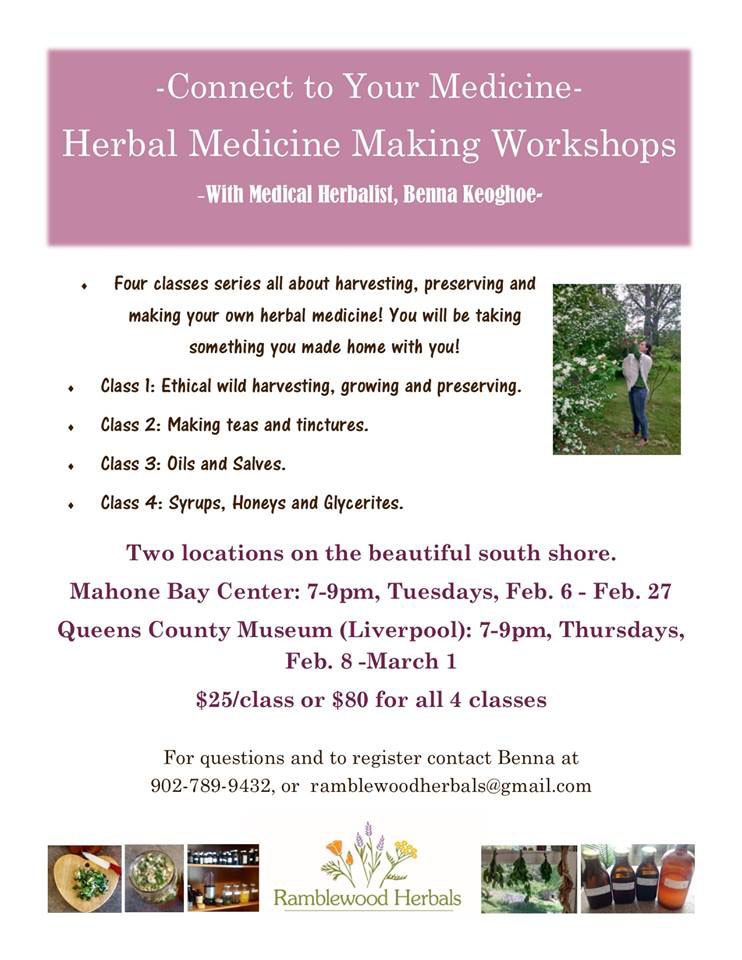 Herbal Medicine Making Workshop
